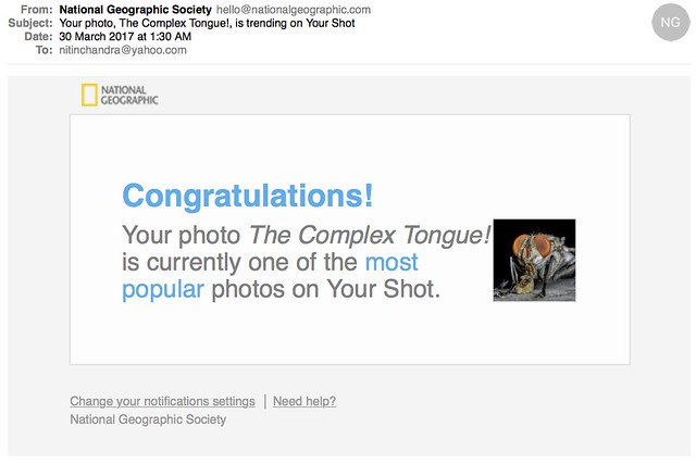 Your photo The Complex Tongue is trending on Your Shot