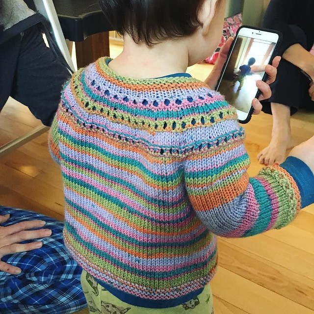 Distracting Ripley with a video so I can take a pic of her wearing one of the sweaters. 💜💚💛💙💖❤️