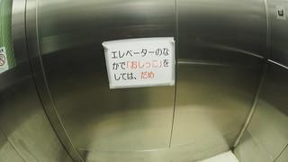 P1010228