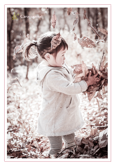 誕生日記念の家族写真 愛知県豊田市 愛知県緑化センター・昭和の森 市民農園(畑) 人気 オススメ 自由な子供の写真 男の子 女の子 データ