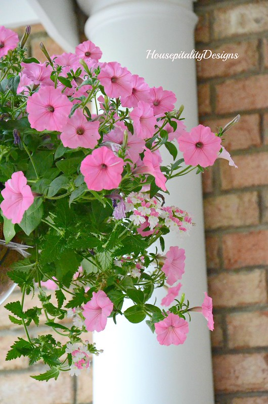 Pink Petunias-Pink and White Verbena-Housepitality Designs