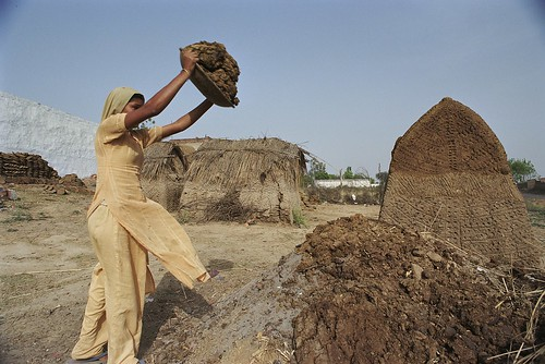 Dung to be dried for fuel | by World Bank Photo Collection
