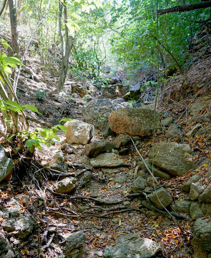Jones Valley Trail, Shirley Heights, Antigua