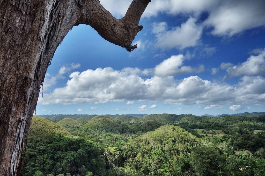 Bohol - Chocolates Hills 3