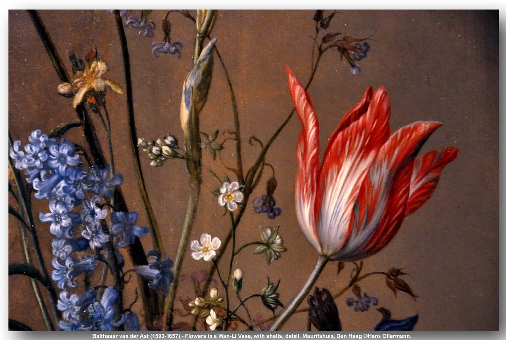 Balthasar Van Der Ast 1593 1657 Flowers In A Wan Li Va Flickr