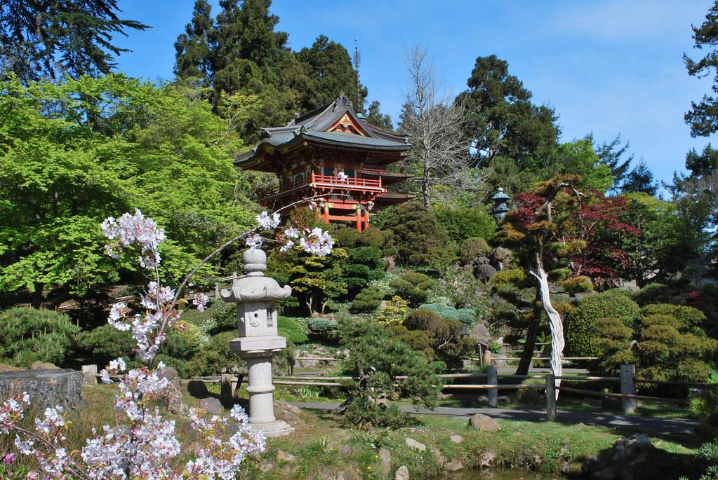 Japanese Tea Garden Golden Gate Park San Francisco Cali Flickr