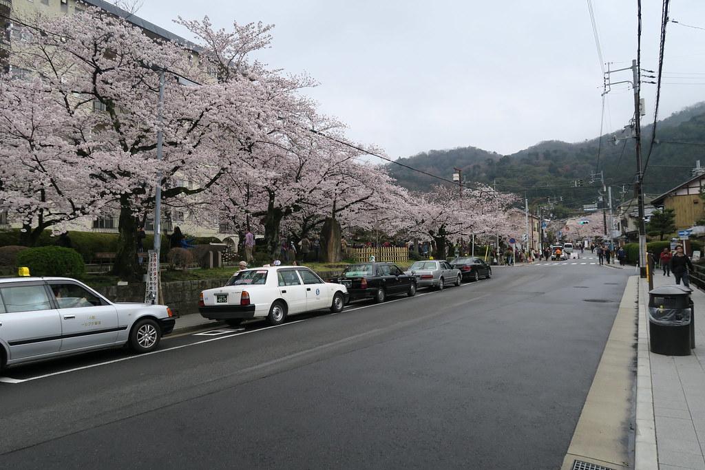 銀閣寺道 巴山站。遠方就是銀閣寺的方向。