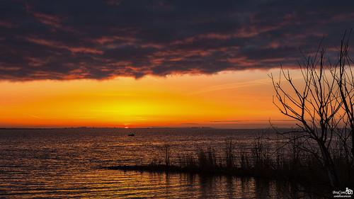 Sunrise Haringvliet
