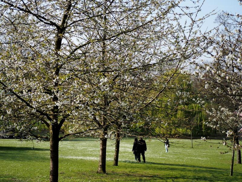 regents park lontoo