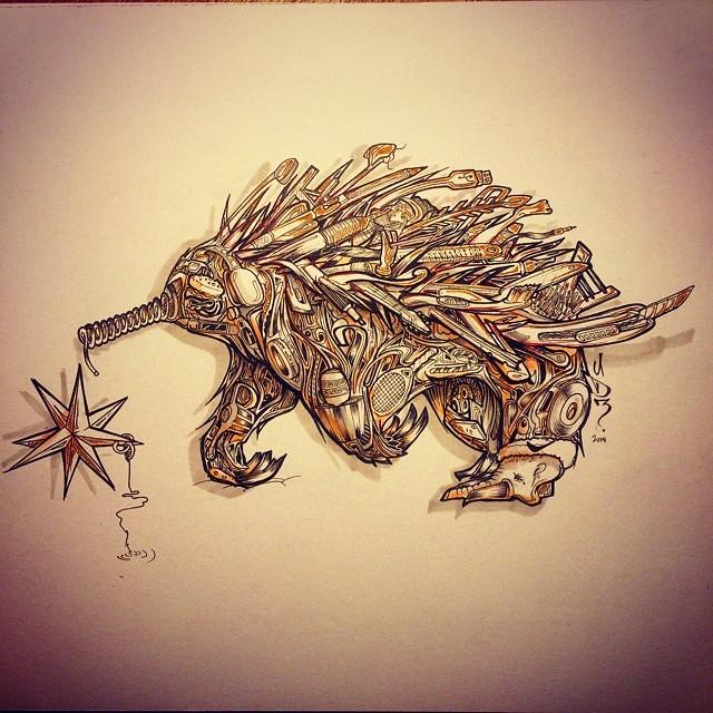 Cute Echidna Drawing Cute a Wild Echidna