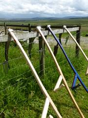 Scything Yorkshire