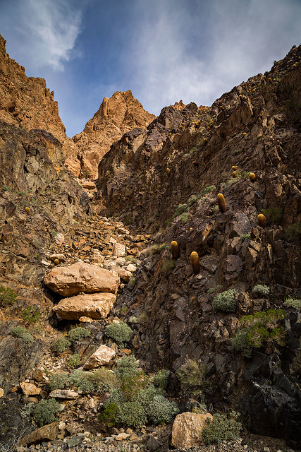 Side Canyon Peak