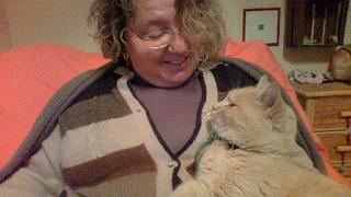 i gatti cerano il rapporto con il loro umano