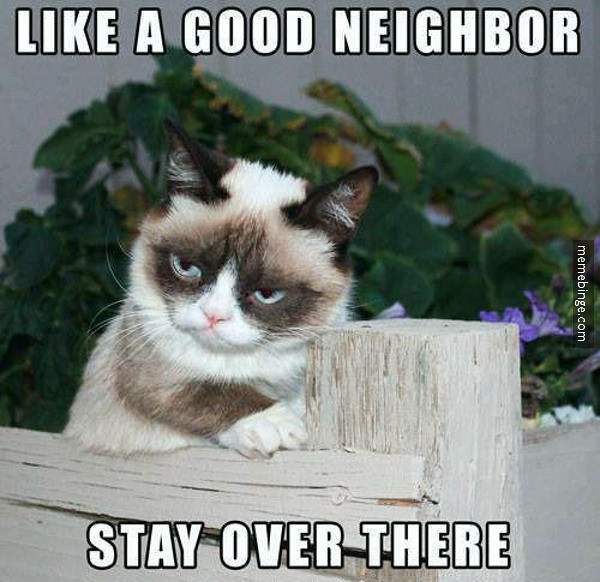 Grumpy Cat's twist on ...