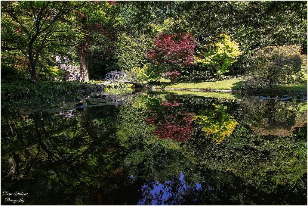 Lo specchio del laghetto nei giardini di villa melzi d 39 eri for Foto case giapponesi