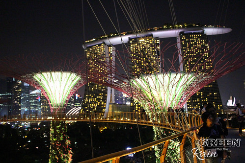 160910f OCBC Skywalk Gardens by the Bay _073