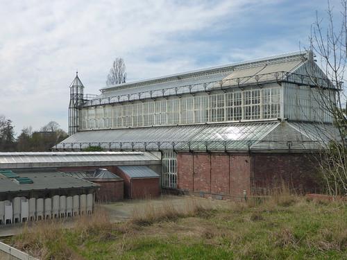 Gewächshaus 2