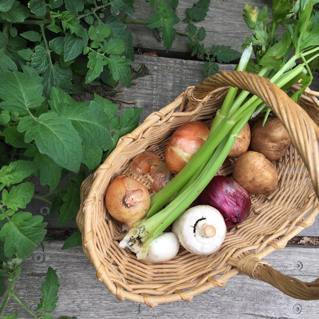 a quick shop for celery, onions, mushrooms and potatoes, ready to go home in my basket