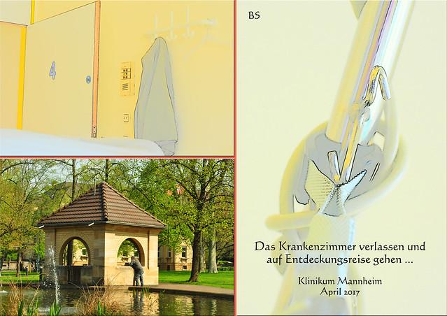 Das Krankenzimmer verlassen und auf Entdeckungsreise gehen ... Klinikum Mannheim (UMM), April 2017. Die Gänse-Erlebnisse usw. Foto: Brigitte Stolle