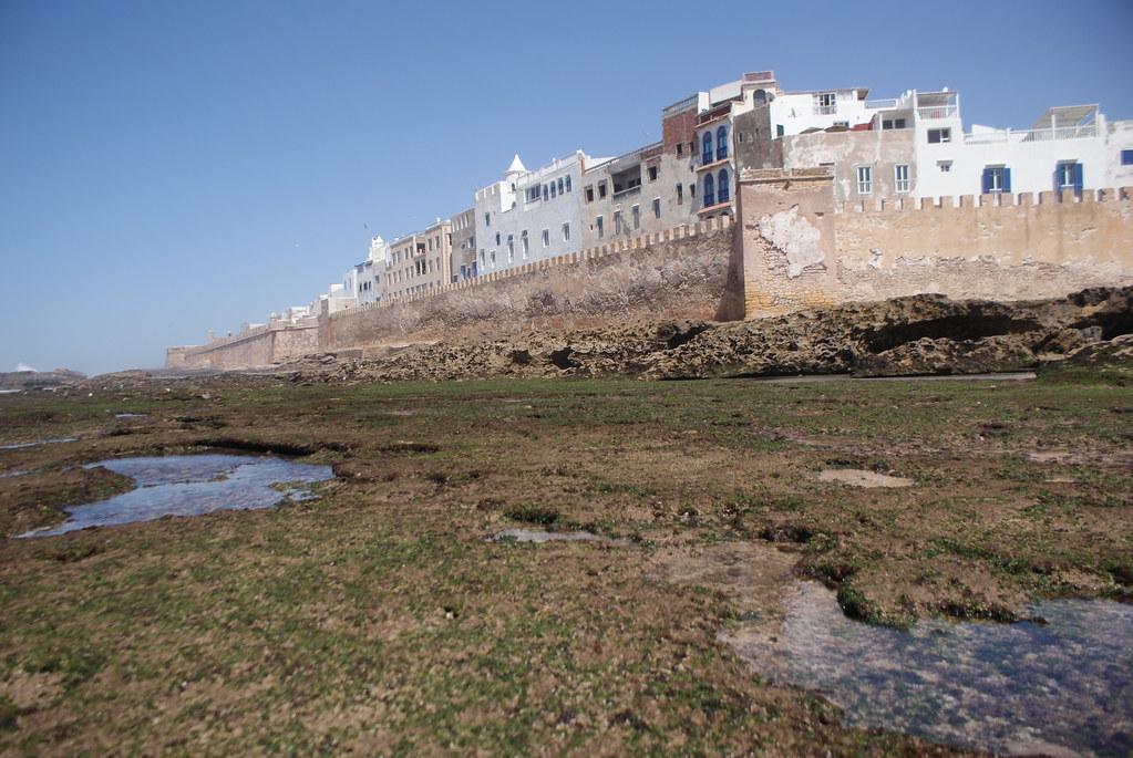 La cité d'Essaouira au Maroc (côte Atlantique) derrière ses fortifications.