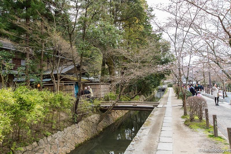 Paseo-Filosofia-Kioto-78