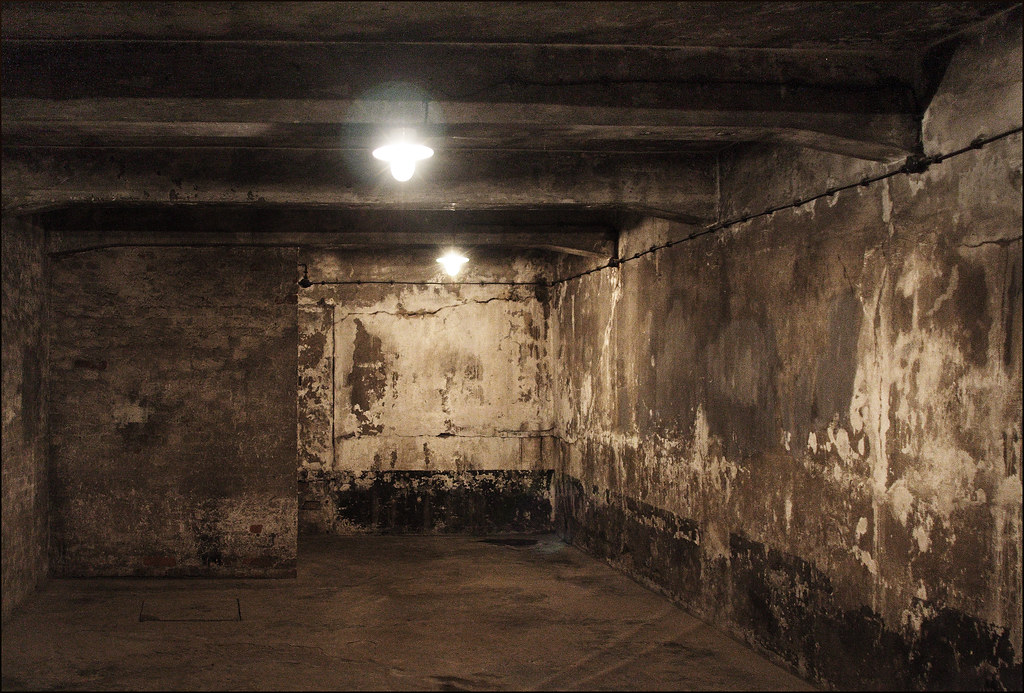 Holocaust Gas Chambers - The World As We Know It