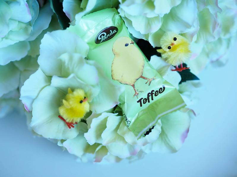P4145066.jpgEasterVibesChicksFlowers,P4145070.jpgEasterVibesChicksFlowers, pääsiäinen, easter, happy easter, everybunny, tipu, tipt, koristeet, decorations, chicks, keltaiset tiput, vaalean vihreä hortensia kimppu, hydrangea, hortensia, kukat, flowers, juhlapyhä, life, suklaa, chocolate, pääsiäissuklaa, easter chocolate, tipu suklaa, vihreä, green, värit, colors,