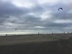 Ocean Beach windsurfers