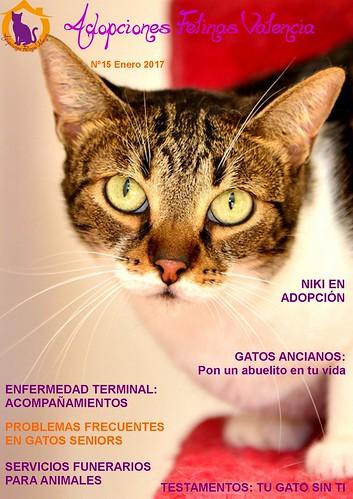 Revista nº 15 Enero 2017: Gatos seniors. Enfermedad terminal: acompañamientos. Servicios funerarios para animales. Testamentos: Tu gato sin ti 32657197393_1ed61e9a8d