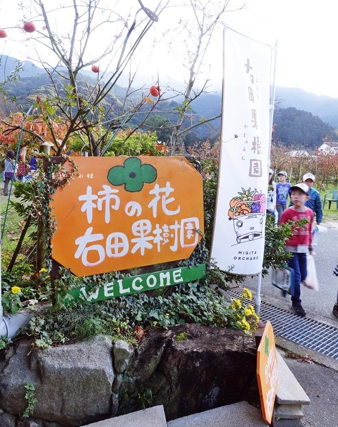 54日本九州自由行 日本威尼斯 柳川遊船  蒸籠鰻魚飯  みのう山荘-若竹屋酒造場