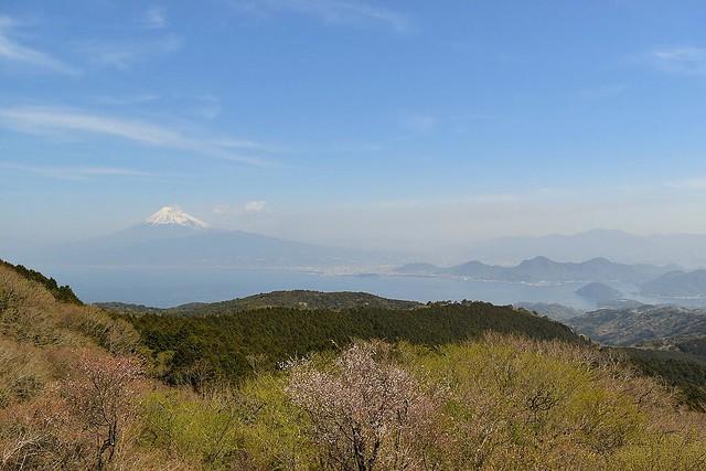 だるま山高原レストハウスからの富士山の展望