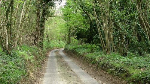 Downland Lane