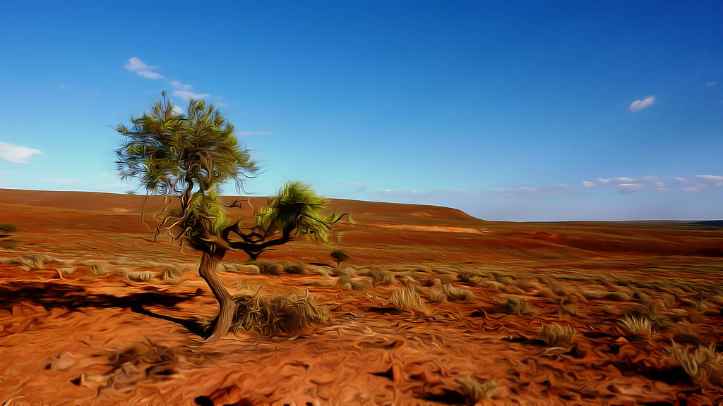 Outback SA-3 HD Wallpaper - P1260261 | SEE: cleansurf2's ... Oasis Landscape Wallpaper