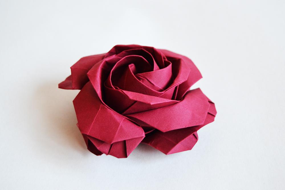 235-square rose
