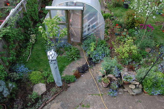 View of the garden from an upstairs window