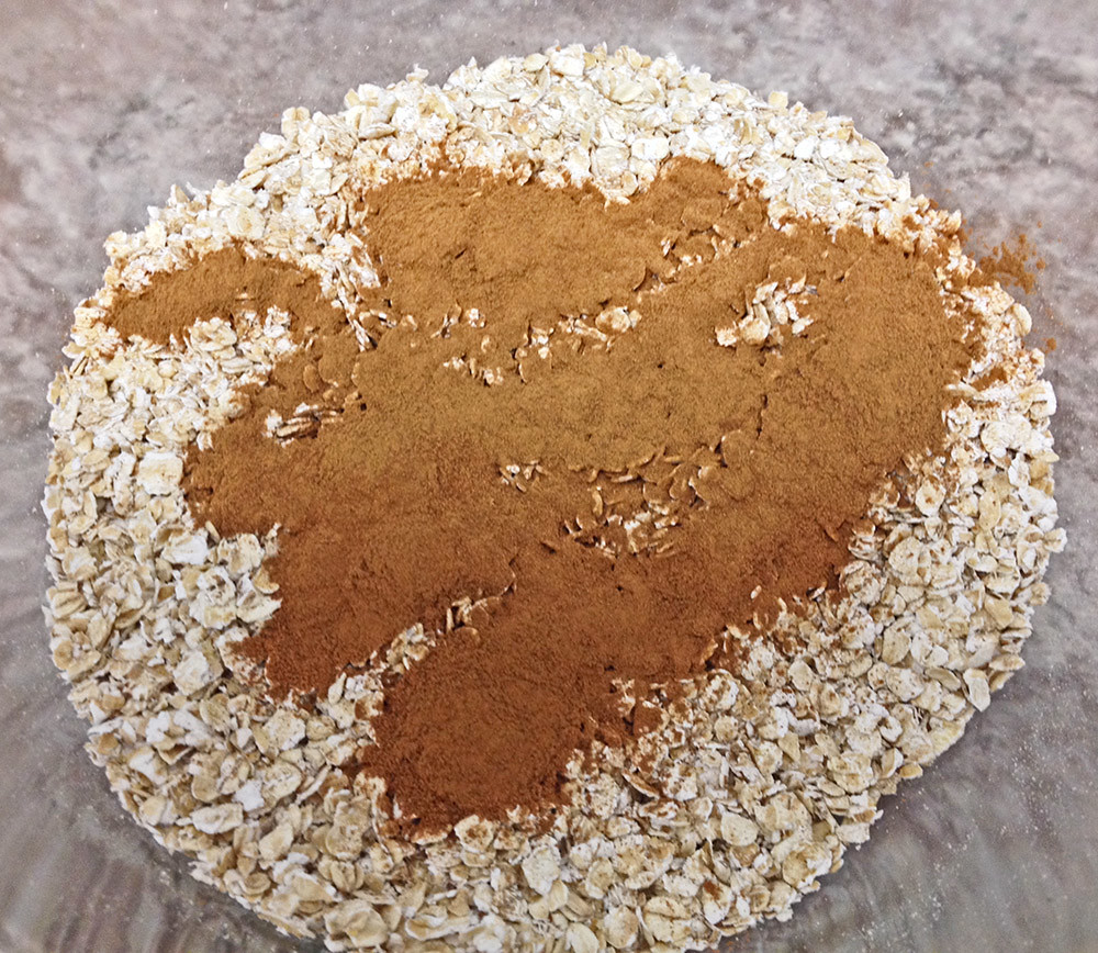 Cinnamon Oatmeal Dry Ingredient Mix