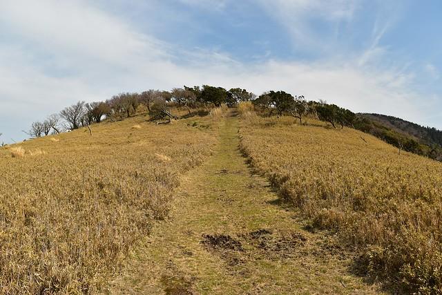 宇久須峠から風早峠へ