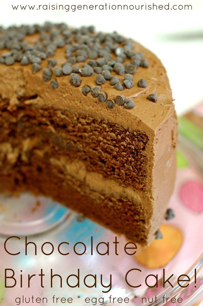 Chocolate Birthday Cake Gluten Free Egg Free Nut Free Flickr