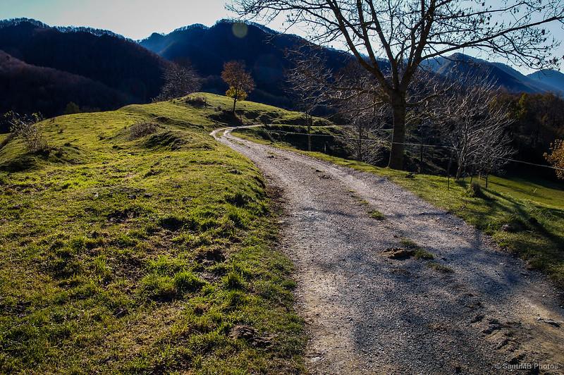 El camino de vuelta a contraluz