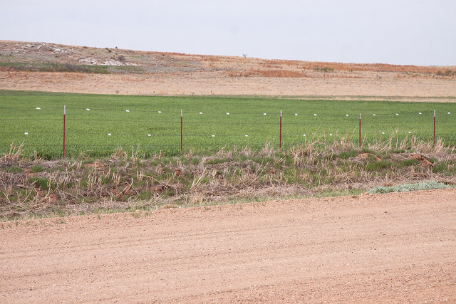 Fence with visibility markers