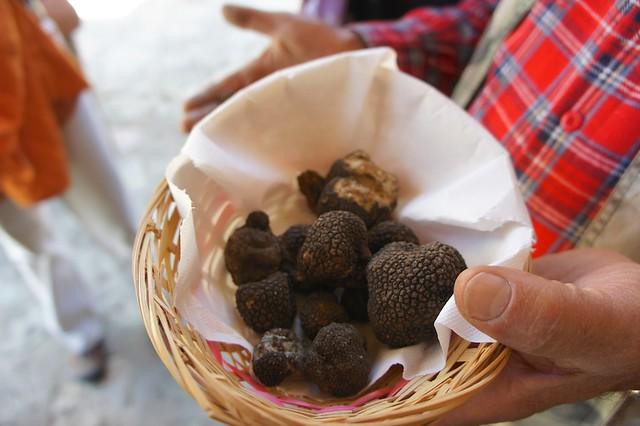 black-truffles-patrico-umbria-italy-cr-brian-dore