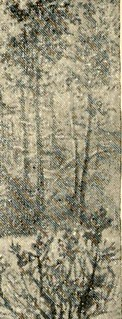 "Image from page 315 of ""History of the Twenty-third Pennsylvania volunteer infantry, Birneys Zouaves : three months and three years service, Civil War .."" (1904) 