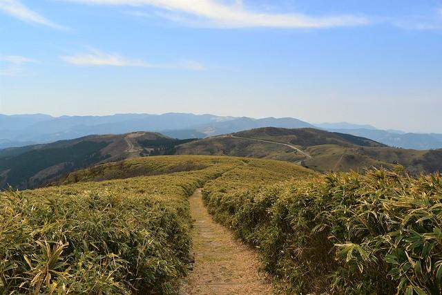 達磨山から眺める伊豆山稜線歩道