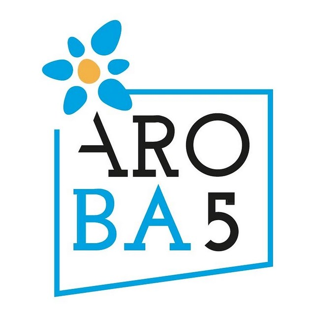 ARO BA5 LOGO