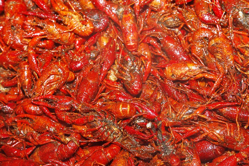 제12회 어린이 선교를 위한 Crawfish Boil