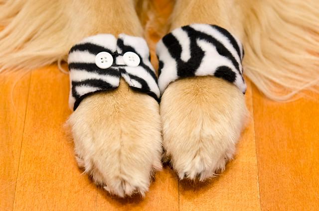 Zebra Cuffs