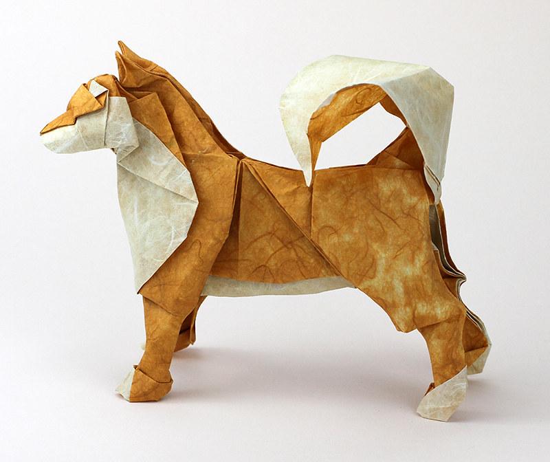 Dog Diagram By Satoshi Kamiya Folded By Me Paper Backco Flickr