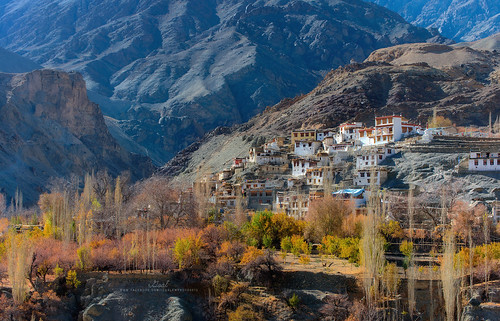 Autumn in Leh Ladakh | by https://www.facebook.com/iGoaljourney