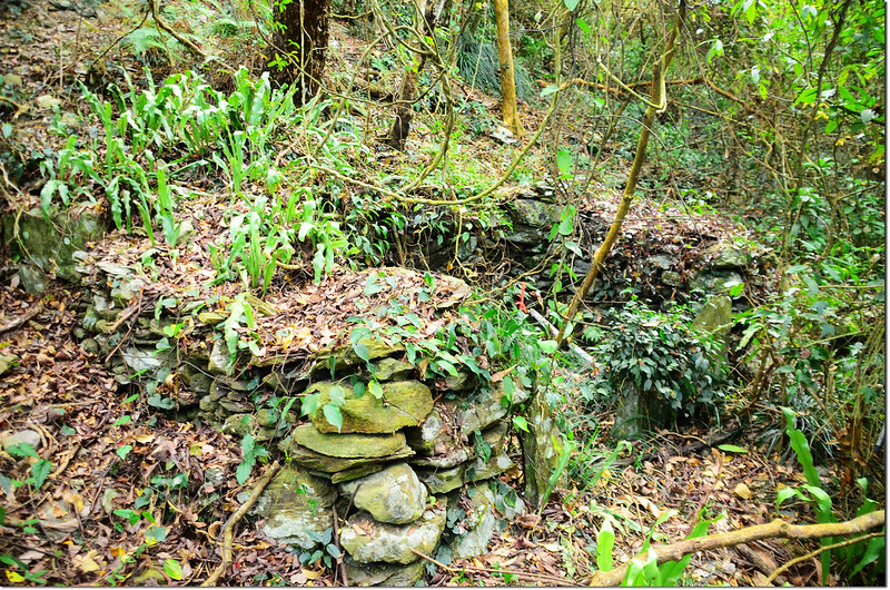 吐蛇流西北峰途中石板屋遺址 2