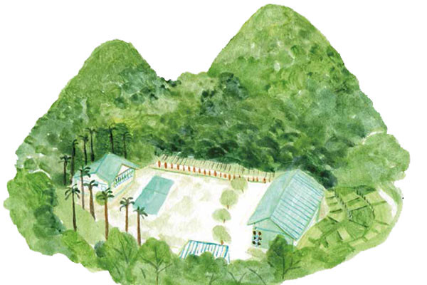 圖片來源:達非設計企劃工作室·Hui繪圖,主婦聯盟提供。